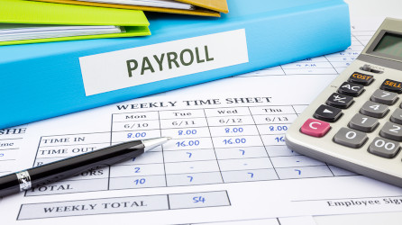Single Touch Payroll Services Boronia Heights